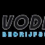 Vodimex